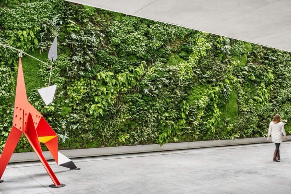 Yeşil Duvarlar: Teknoloji Doğayı Mimariye Nasıl Getiriyor?
