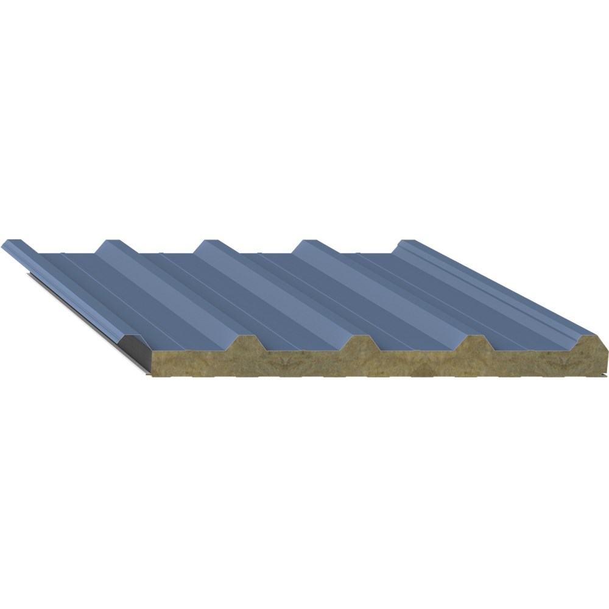 Roof Panel | N5T
