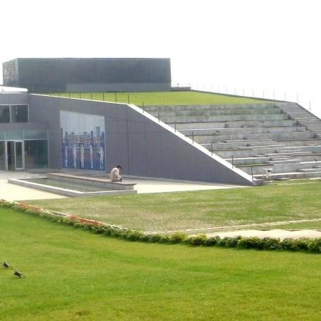 Roof Covering | Ondugreen