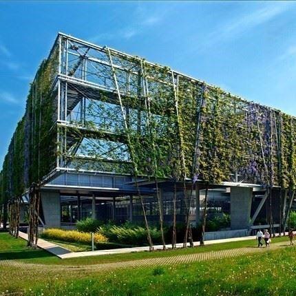 Facade Greening System