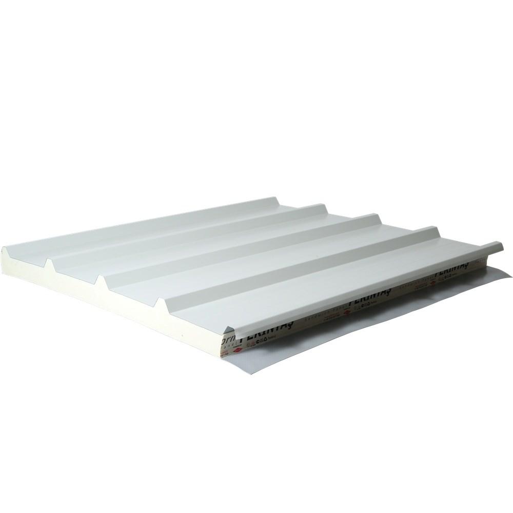 Membrane coating roof panel