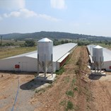 Sandwich Panel Roofing - 1