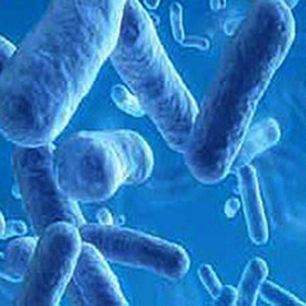 Antibacterial Laminate