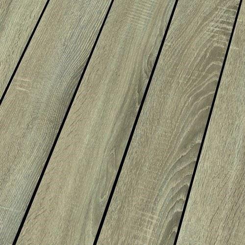 Blue Line Nature | 919 Sonoma Oak
