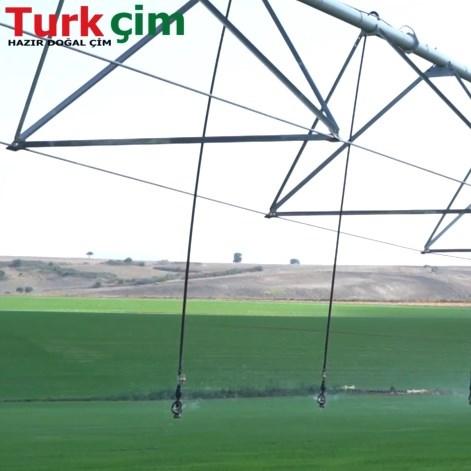 Turk Çim Tanıtım