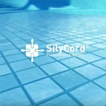 SilyCord Sistem Tanıtımı