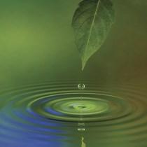 Su İzolasyon Malzemesi | Terraseal