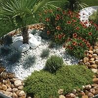 Landscape Design and Application Service - 1