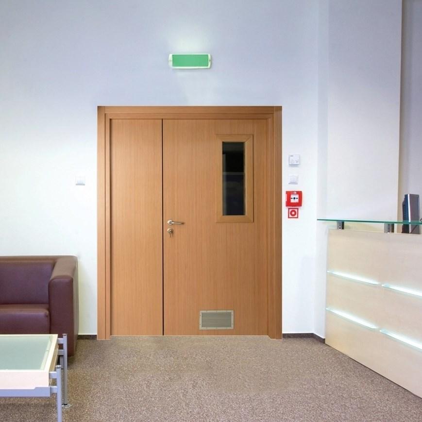 Fire Resistant Wooden Hospital Door