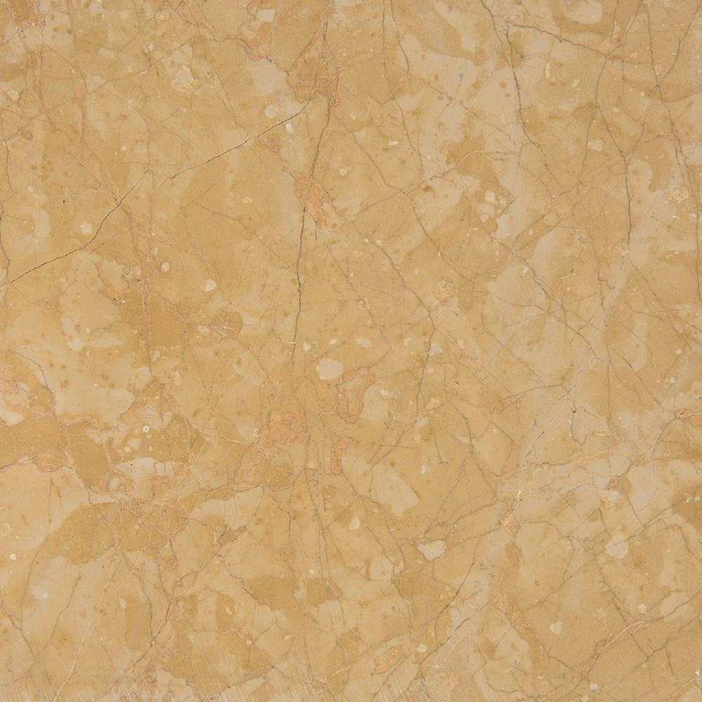 Golden Primrose  - 1