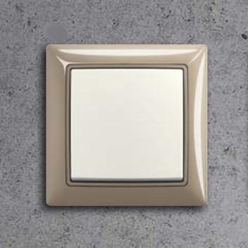 Electric Switch | Basic55®