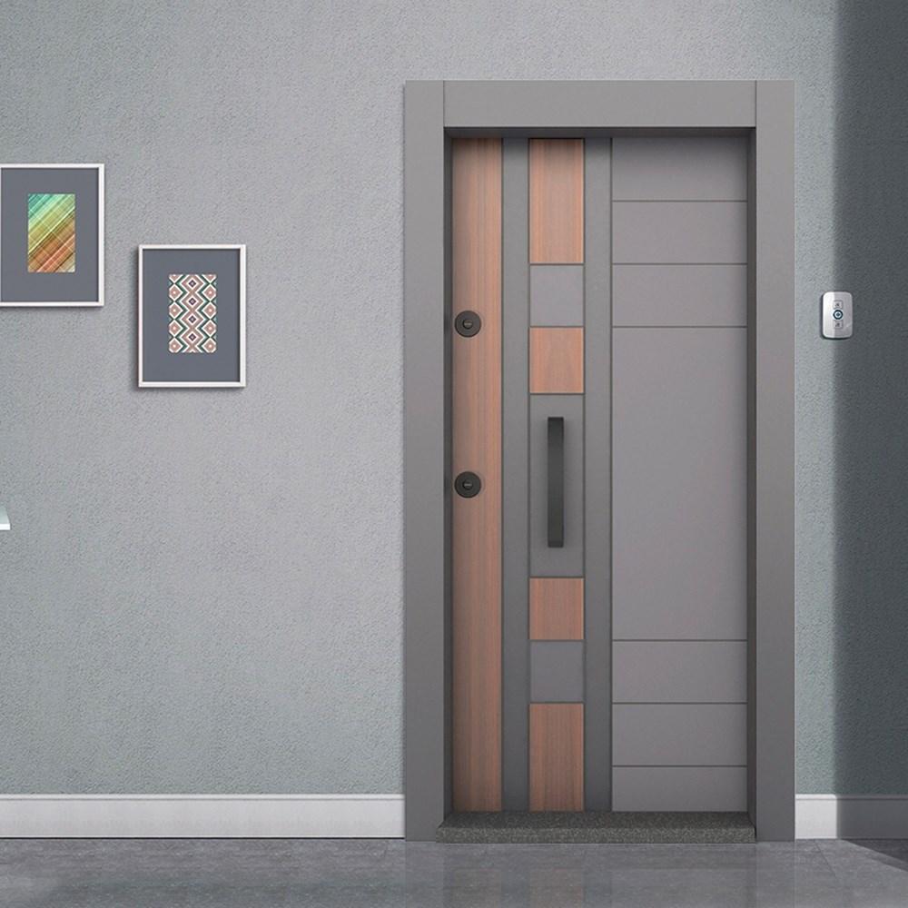 Steel Door | BD-420