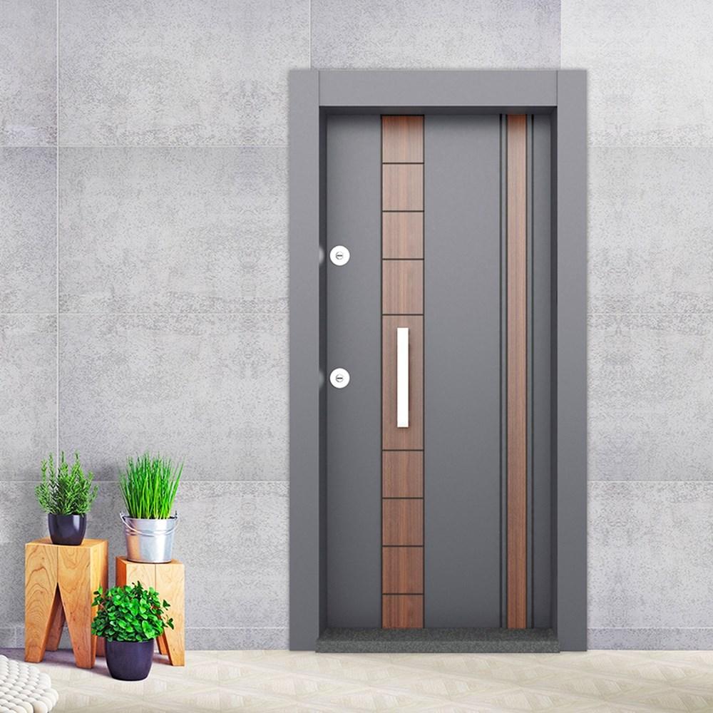 Steel Door | BD-320