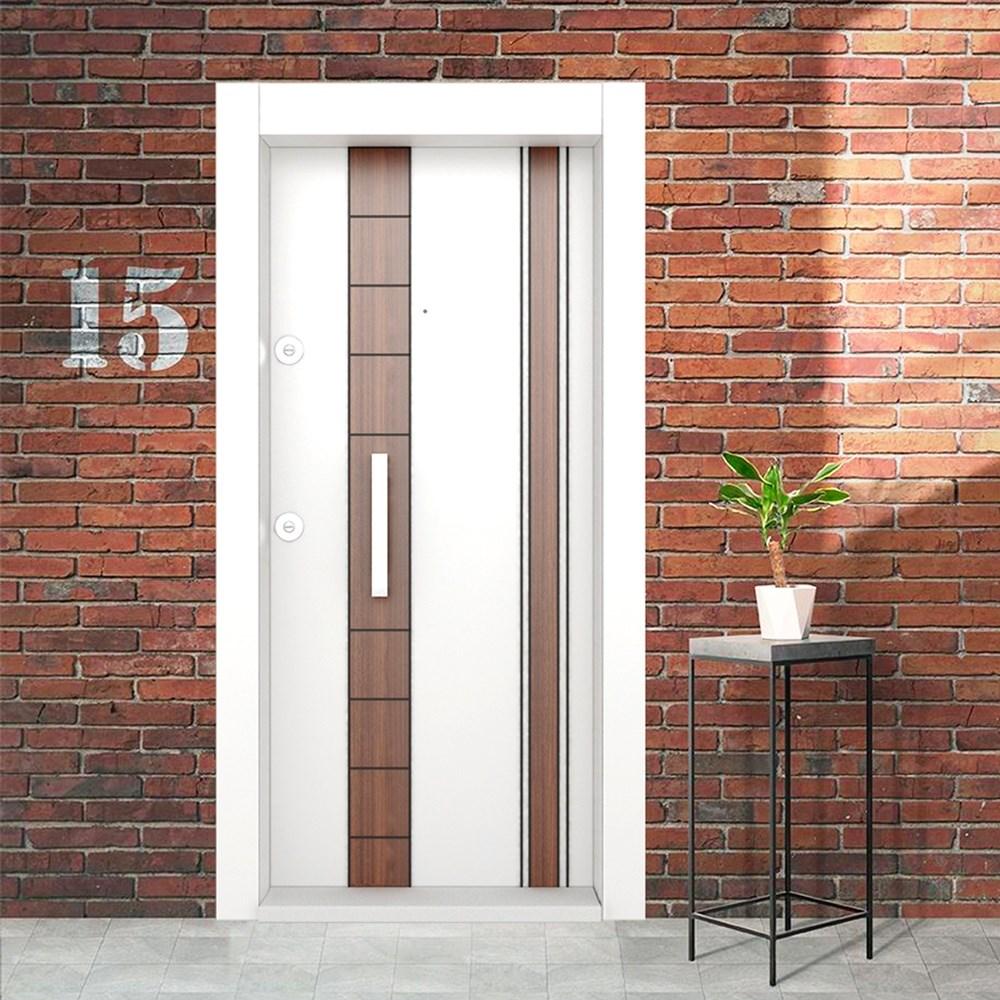 Steel Door | BD-310