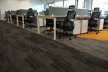 Carpet Tile | Woodbine - 15