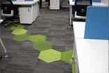 Carpet Tile | Woodbine - 17