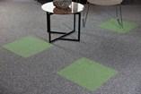 Carpet Tile   Quebec - 4