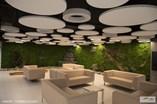 Canopy Akustik Panel - 12