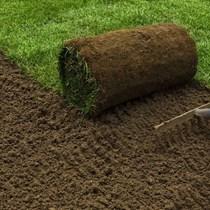 Hazır Doğal Rulo Çim | Standart Rulo Çim