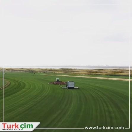 Turk Çim İpsala Üretim Çiftliği